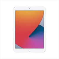 Apple iPad 10.2-inch Wi-fi Only (8th Generation) 32GB - Silver